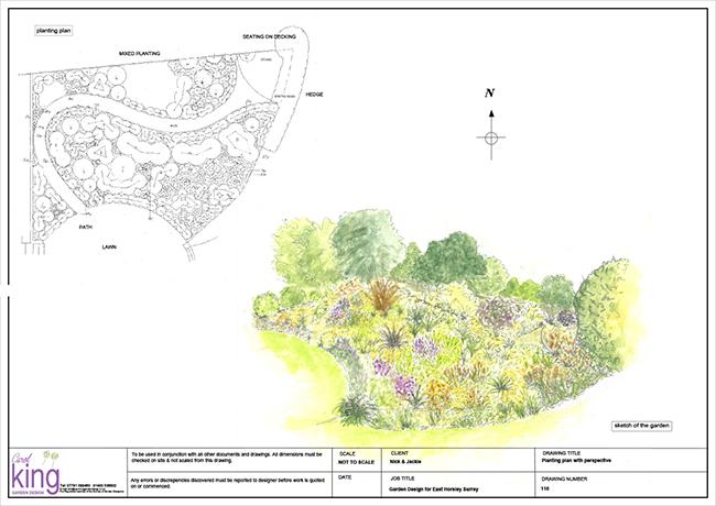 PORTFOLIO SHEET Honey border Plant plan + perspective complete